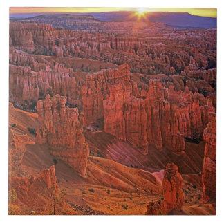 United States, Utah, Bryce Canyon National Park. Tile