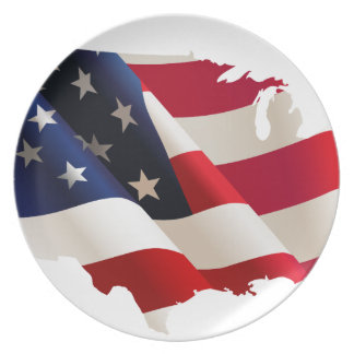 United States wave flag Party Plates