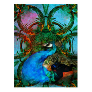 Universe of the Peacock vertical postcard