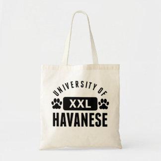 University Of Havanese Bags