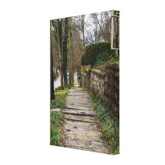 Unlevel Pathway Canvas Print