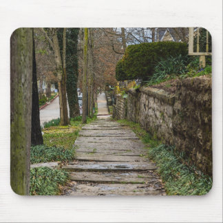 Unlevel Pathway Mouse Pad