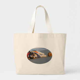 Unnecessary Roughness Canvas Bag