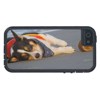Unnecessary Roughness Case For iPhone 5