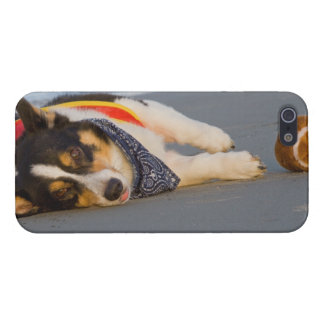 Unnecessary Roughness Case For iPhone 5/5S
