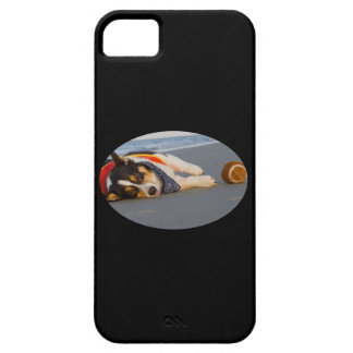 Unnecessary Roughness iPhone 5 Covers