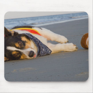 Unnecessary Roughness Mouse Pad