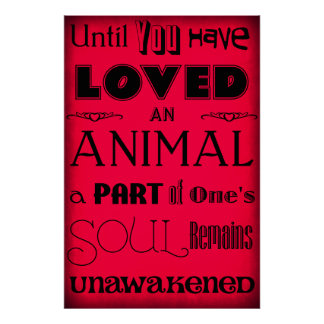 """Until You Have Loved An Animal..."" Poster Red"