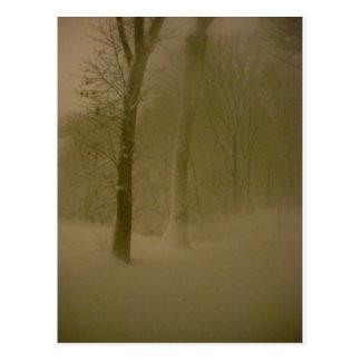 Untouched Blizzard Photography 1 (Snowstorm ) Postcard