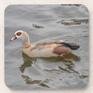 Unusual Duck Beverage Coaster