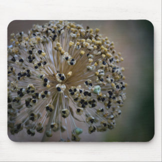 Unusual Flower Mouse Pad