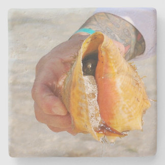 Up Close Photo Of Live Conch in Ocean Stone Coaster