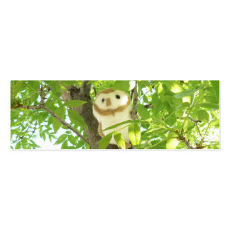 Up in a Tree! Pack Of Skinny Business Cards