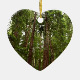 Up to Redwoods at Muir Woods National Monument Ceramic Ornament