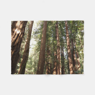 Up to Redwoods II at Muir Woods National Monument Fleece Blanket