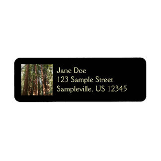 Up to Redwoods II at Muir Woods National Monument Return Address Label