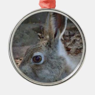 Upclose Rabbit Christmas Tree Ornaments