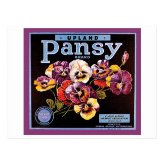 Upland Pansy VIntage Crate Label Postcard
