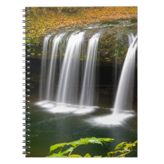 Upper Butte Creek Falls in Autumn Notebook