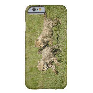 Upper Mara, Masai Mara Game Reserve, Barely There iPhone 6 Case