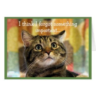 Upset Tabby Cat Belated Birthday Card