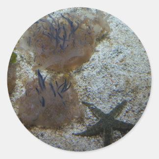 Upside-down Jellyfish Stickers