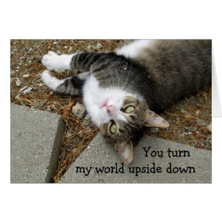 Upside Down World Cat Valentine's Day Card