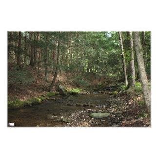 Upstream Photo Print