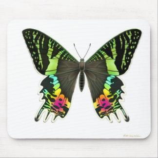 Urania Sunset Moth Mousepad