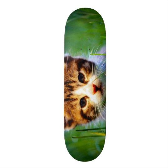 Urban Kitty King Custom Pro Park Board 21.6 Cm Old School Skateboard Deck