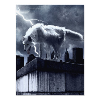 Urban Wolf Photo Print