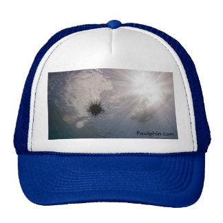 Urchin and the Sun - Trucker Hat Mesh Hats