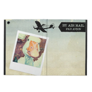 US Air Mail Goose Tan Coloured Case For iPad Air