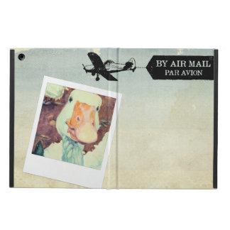 US Air Mail Goose Tan Coloured iPad Air Cover