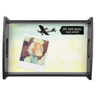 US Air Mail Goose Tan Coloured Serving Tray