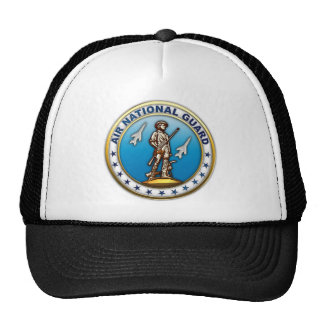 US Air National Guard Hat