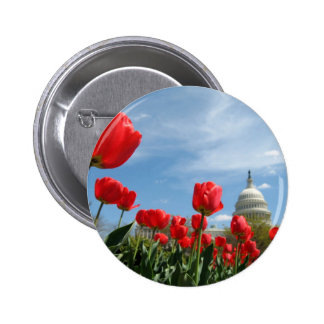 US Capitol Building Spring photo Pinback Button