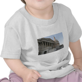 US Capitol Building Sunset T Shirts