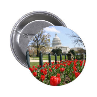 US Capitol spring flower Buttons