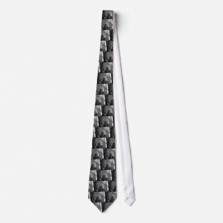 US & Chicago city flag Tie