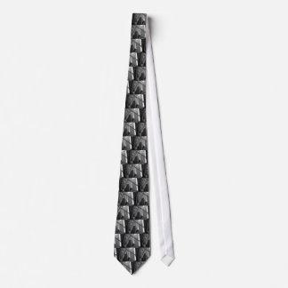 US & Chicago city flag Tie