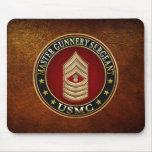 US Marines: Master Gunnery Sergeant (USMC MGySgt)