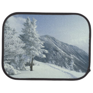 US, NH, Snow covered trees Trails Snoeshoe Car Mat
