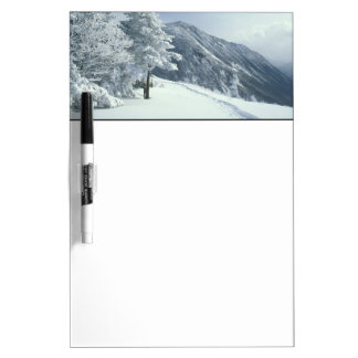 US, NH, Snow covered trees Trails Snoeshoe Dry Erase Whiteboards