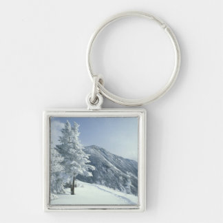 US, NH, Snow covered trees Trails Snoeshoe Silver-Colored Square Key Ring
