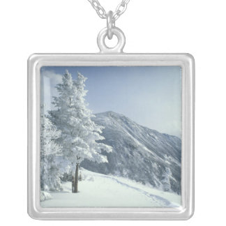 US, NH, Snow covered trees Trails Snoeshoe Square Pendant Necklace