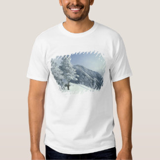 US, NH, Snow covered trees Trails Snoeshoe T Shirt