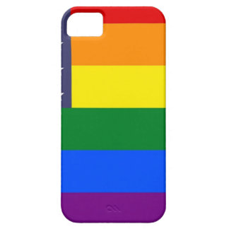 US Rainbow Pride Flag Case For The iPhone 5