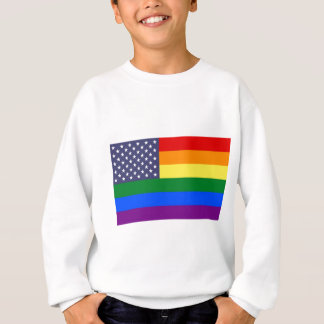 US Rainbow Pride Flag Sweatshirt