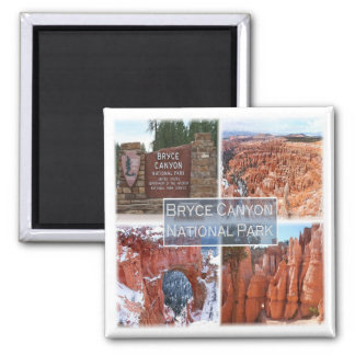 US * U.S.A. - Bryce Canyon N.P.Utah Usa Magnet